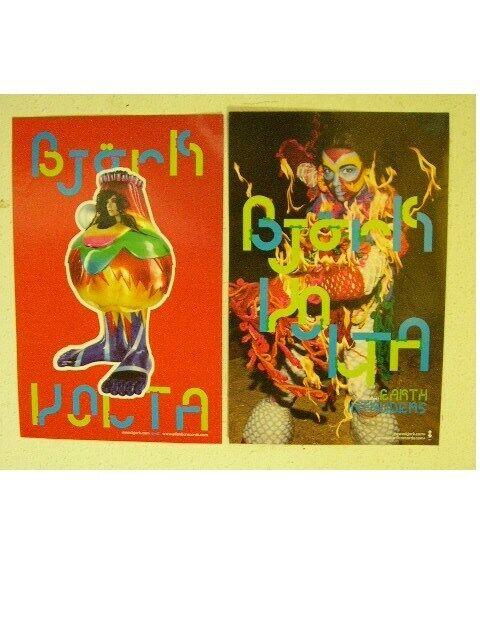 Bjork Poster 2 Sided Volta