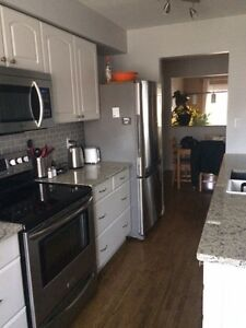 Renovated home, newly furnished room for rent, close to UW/WLU Kitchener / Waterloo Kitchener Area image 9