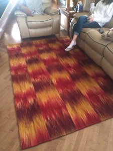 Brand New area rug 5x8