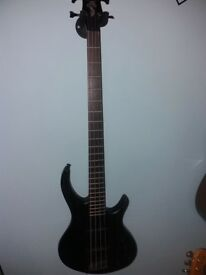 Epiphone Toby Bass