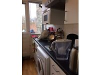 Studio Flat Stroud Green Self Contained (Own Garden) Rent Direct from Landloard NO FEES