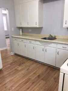 Gorgeous One Bedroom Apt for rent Jan 1