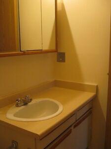 Grizzly Ridge - 3 Bedroom Apartment for Rent Edmonton Edmonton Area image 7
