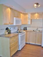 COMPLETELY RENOVATED BACHELOR APARTMENT - Available February 1