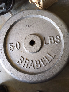 50 Lbs Weight Lifting Plates - Free