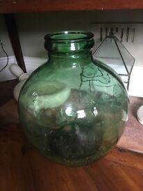 Vintage green glass Carboy terrarium - cactus, succulents etc