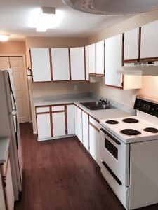 2 Bed, 1 Bath Condo - Avail. MAY 1st - Includes AC & W/D