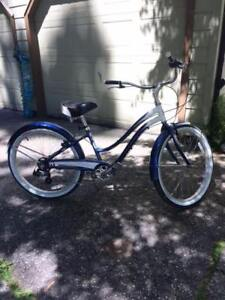 Cruiser Bike (Trek)