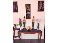 Professional relaxing Thai massage