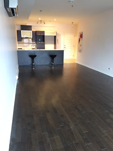 NEW 5 ½  CONDO FOR RENT! MOVE-IN READY!PARKING AND STORAGE INCLU
