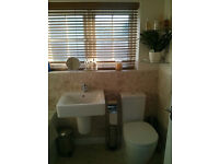 Lovely Double Room With Own Bathroom in Buckshaw Village