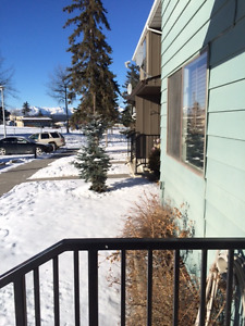 Hinton Condo for Rent - walkout basement, wood fireplace