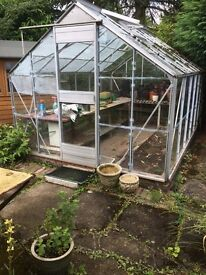 Glass and aluminium greenhouse 2.5m wide x 3.75m long
