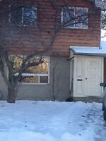 NEWLY RENOVATED 4 BDRM STUDENT HOME – 2 MINUTES FROM ST LAWRENCE