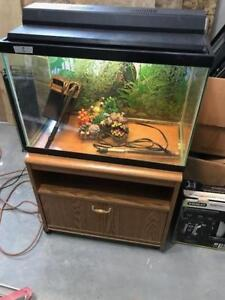 20G Fish tank and stand