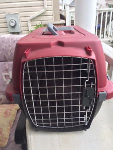 Red Dog Crate