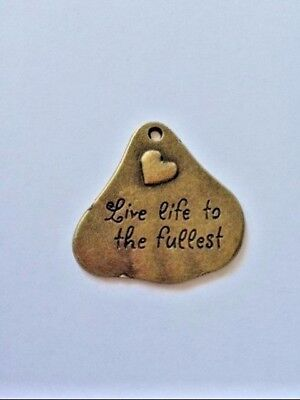 Live Life To Fullest Charm Pendant Donate  3 50 Feral Cat And Kitten Rescue