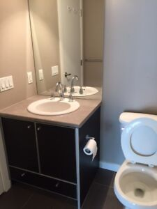one bedroom apartment near King George Skytrin Sta