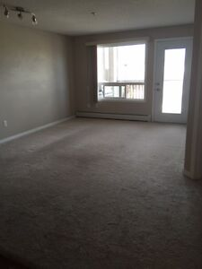 Condo for rent in South West Edmonton for 1100 a month