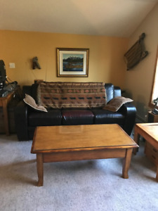 Creekside condo looking for a mature female roommate