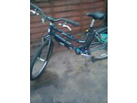 adult city/town bicycle