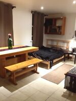 Sublet Dec-March Furnished Equipped Cute Studio in Lower Plateau