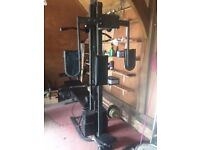 Gym Equipment and Weights for sale