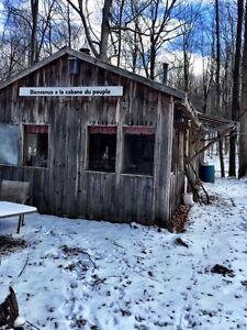 Maison et cabane à sucre avec terre à bois 50 acres