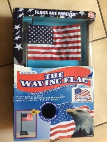 The  Waving American Electronic Flag  Plays 2 Songs