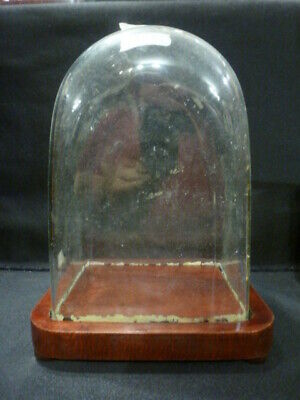 Period Glass dome for carriage clock or similar to display (2)