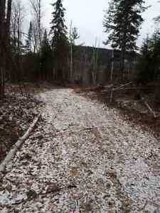 Beau terrain, bord de l'eau Gatineau Ottawa / Gatineau Area image 2