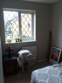 Single (small double) Room in Bright House 6 month Let possibly longer