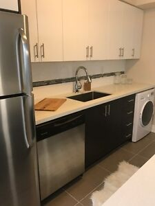 Newly Renovated Apartment for Rent in Downtown Burlington!