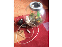 Bio Orb 15l Fish Bowl cold water aquarium with light and ornaments £25 no offers
