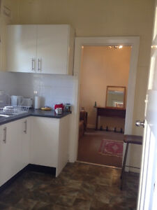 Fully Furnished Studio Apartment - short stay (1 wk to 3 months) Summer Hill Ashfield Area Preview