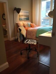 Looking for a roommate!