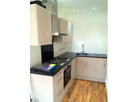 Brilliant two bed apartment newly refurbihsed 5 minutes off Whitechapel station and amenities