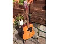 Washburn Acoustic Guitar