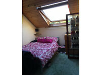 Large, furnished double room with private en-suite bathroom in friendly Mill Road house share