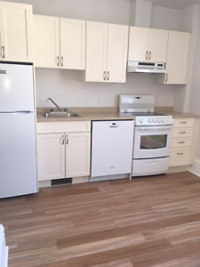 Very Close to Queen's, Totally renovated with dishwasher