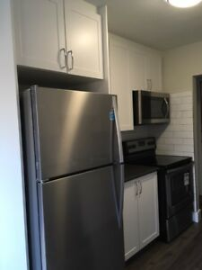 1 Bedroom- BRAND NEW RENOVATED! Pet Friendly