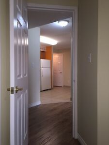 Quiet Two Bedroom Condominium at Langlois & Ottawa! Windsor Region Ontario image 8