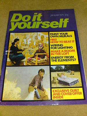 DO IT YOURSELF MAGAZINE - MURALS Jan 1975 Do It Yourself Murals