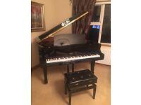 Baby Grand Piano Stienhoven
