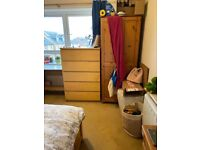 Comfortable single room available 4 Feb