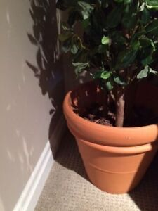 Life like large artificial plant with ceramic pot