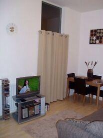 1 bedroom studio flat £450pcm with utility bills