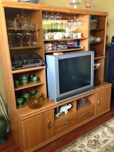 Wall Unit For Sale – Lots of Storage - Excellent Condition