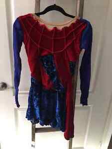 Figure Skating Dress - Spiderman (Ladies Small)
