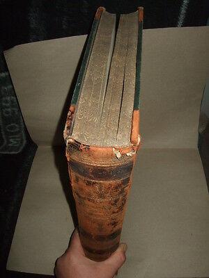 Die Bibel,Heilige Schrift,1868,Franz v. Allioli,Prachtausgabe m.230 Bildern!7kg!